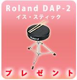 drum_roland_dap2_p