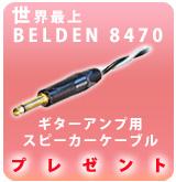 Belden8470amp_P