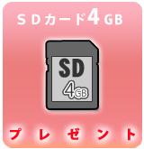 SD8GBbanarP