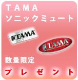 TAMAmute_P