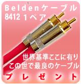 Belden_8412_B_1P_POP