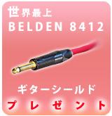 Belden 8412