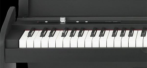 KORG 電子ピアノ LP-180 鍵盤